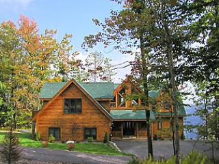 The Bears Den - Image 1 - McHenry - rentals