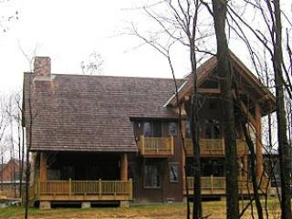 Baraboo Lodge - Image 1 - McHenry - rentals