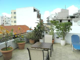 Chania city apartment with lovely terrace - Magnesia Region vacation rentals