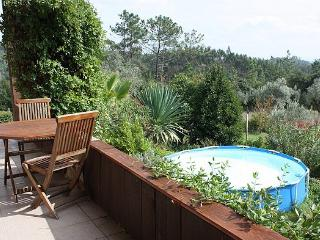 Spacious Villa with Internet Access and House Swap Allowed - Penacova vacation rentals
