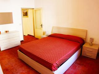 IL FIORDALISO (Castelfranco di Sotto) - Castelfranco Di Sotto vacation rentals