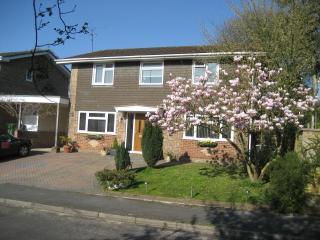 Oak Tree House - Liphook vacation rentals