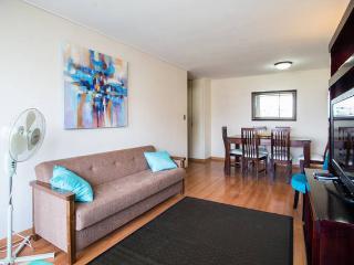 Comfortable apt in the best location - Santiago vacation rentals