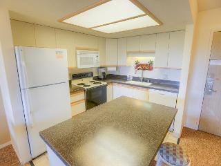 Beautiful Condo, across from Kamaole Beach II! - Kihei vacation rentals