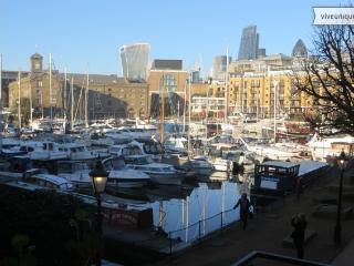 Beautiful & Unique views on St. Katherines Dock, Apartment - sleeps 4 - London vacation rentals