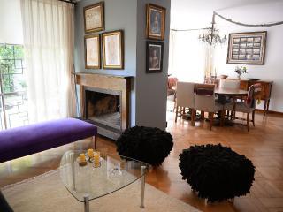 Casas del Cerro / Larch Apartment - Santiago vacation rentals