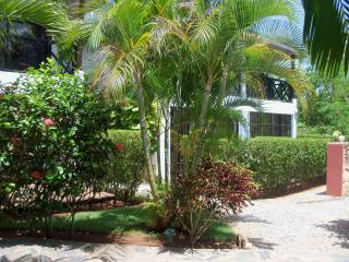 Nice Condo with Internet Access and Garden - Las Terrenas vacation rentals