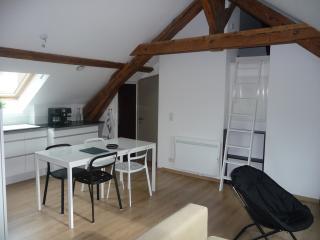 Grenier 2 - Annecy vacation rentals