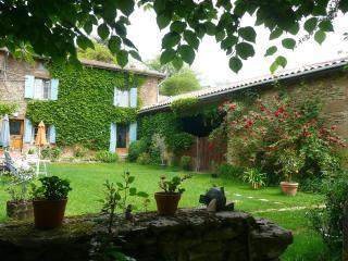 Maison typique de la Drôme des Collines : - Chateauneuf-de-Galaure vacation rentals