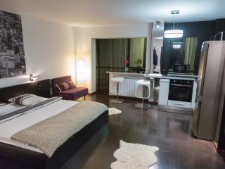 - LUXURY STUDIO G - FREE WiFi - SPA - - Bucharest vacation rentals