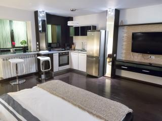 MILITARI - CHARMING LUXURY STUDIO G - WiFi - SPA - Bucharest vacation rentals