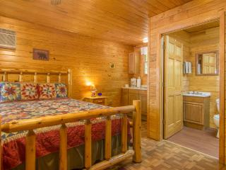 Studio Cabin/Sleep 5 /Pet Friendly/Fall Dates Open - Gatlinburg vacation rentals