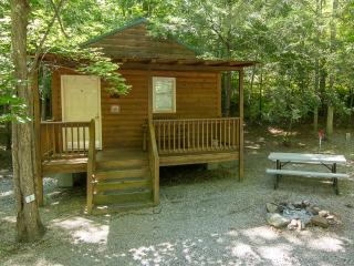 ArrowCreek Camp Cabin/Pet Friendly/GREAT FUN! - Gatlinburg vacation rentals