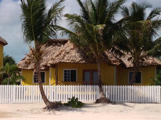 Turtle Cove Boutique 2 Bed Executive - San Pedro vacation rentals