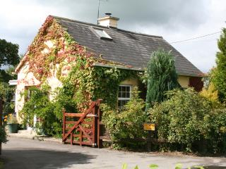 Coopers Cottage - Thurles vacation rentals