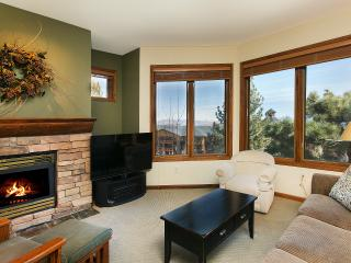 Eagle Run 110 - Mammoth Ski in Ski out Townhome - Mammoth Lakes vacation rentals