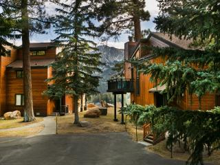 Meadow Ridge 19 - Near Eagle Lift - Mammoth Lakes vacation rentals