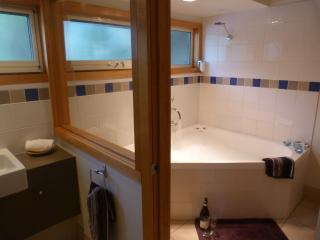Trevally Luxury 1 Bed Spa - United States vacation rentals