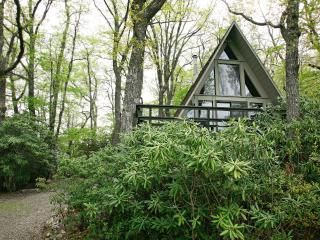 Hike, Explore & Relax with Views of Mt Mitchell - Burnsville vacation rentals