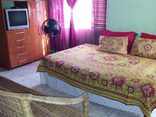STUDIO - Ocho Rios vacation rentals