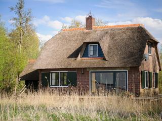 De Graspieper ~ RA42537 - Giethoorn vacation rentals