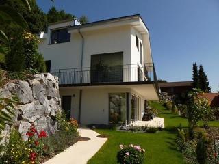 Panorama Lodge Goldiwil ~ RA9763 - Interlaken vacation rentals