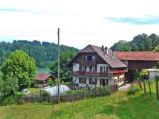 Staad 2 ~ RA9755 - Fribourg vacation rentals