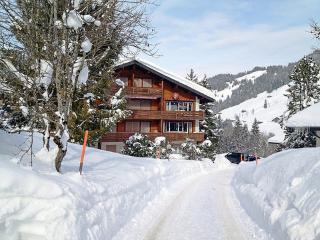 Im Zaeundli HAUS A ~ RA40905 - Habkern vacation rentals