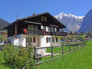 Chalet Gidi ~ RA10025 - Bernese Oberland vacation rentals