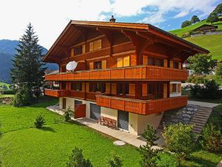 Jungfrau ~ RA10014 - Bernese Oberland vacation rentals