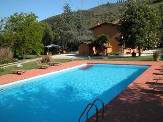 Pietrasanta - 91540001 - Pietrasanta vacation rentals