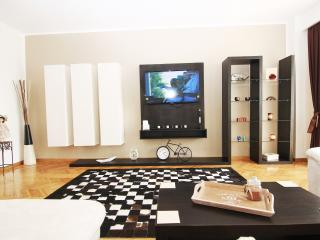 CERT ACCOMMODATION-CHARISMA 2 BEDROOM APARTMENT - Bucharest vacation rentals
