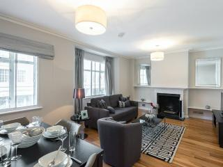 Large modern 1 bed knightsbridge apartment for 4 - London vacation rentals