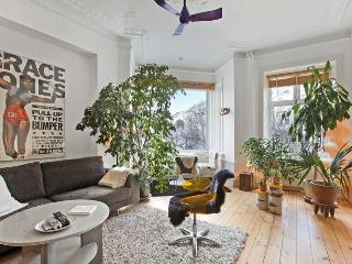 Nice Copenhagen apartment near Nordhavn station - Copenhagen vacation rentals