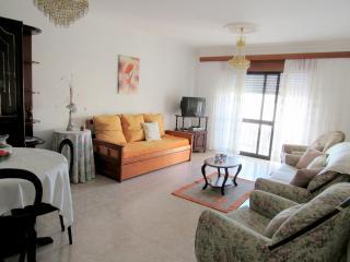 Algarve Boliqueime près de Albufeira Vilamoura - Boliqueime vacation rentals