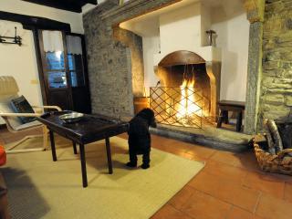 cottage - Molina di Faggeto Lario vacation rentals