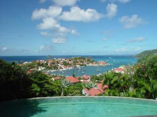 8 Bedroom Villa with Ocean View in Gustavia - Gustavia vacation rentals