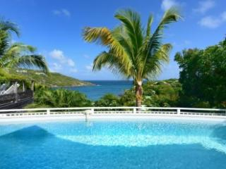 Modern 3 Bedroom Villa with Ocean View in Marigot - Marigot vacation rentals