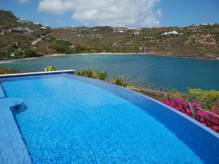 Contemporary 4 Bedroom Villa with Private Dock in Marigot - Marigot vacation rentals