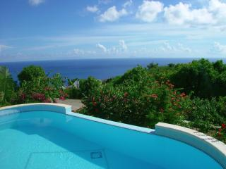 Splendid 2 Bedroom Villa with Private Pool & Terrace in Colombier - Anse des Flamands vacation rentals