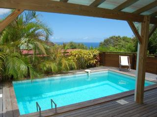 Fully Equipped 2 Bedroom Villa in Colombier - Anse des Flamands vacation rentals