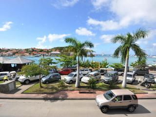 Unique 2 Bedroom Villa with Ocean View in Gustavia - Gustavia vacation rentals