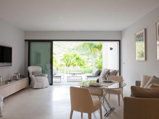 Camille - Gustavia vacation rentals