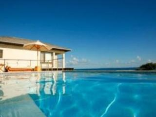 Remarkable 6 Bedroom Villa with Private Infinity Pool in Little Harbour - Image 1 - Crocus Hill - rentals