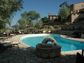 Farm Medieval Castle in Tuscany  ITALY - Castelnuovo di Val di Cecina vacation rentals