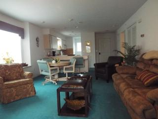 Spacious walk-in level condo! - Branson vacation rentals