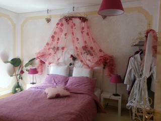 Unforgettable Venice - nice sweet apartment - Venice vacation rentals