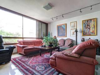 Artist deluxe/4r apt/24h guard/parking/Sourasky - Tel Aviv vacation rentals
