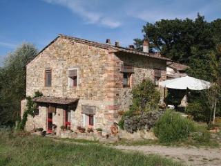 agriturismo dondoli bio farmhause rosa - Greve in Chianti vacation rentals