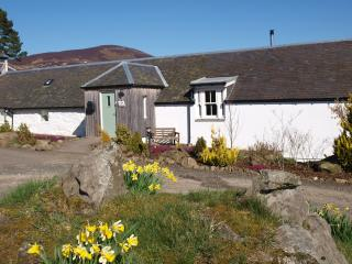 Old Steading Cottage - Spittal of Glenshee vacation rentals